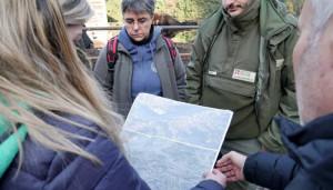Il Parco delle Alpi Marittime coinvolto nel recupero della carcassa di un vitello morto