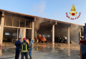 Incendio in un'azienda agricola a Caramagna Piemonte, morti 10 vitelli