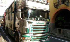 Disagi al traffico a Demonte, camion perde carburante sulla statale