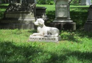 'Il Comune di Cuneo affronti con serenità la proposta della creazione di un cimitero per animali'