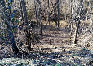 Ripulita l'area della tenuta di Staffarda che era diventata una discarica abusiva