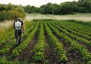 A Marene un convegno sulla sicurezza nel mondo agricolo in memoria di Gabriele Alladio