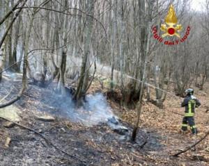 Incendio boschivo a Envie, sul posto i Vigili del Fuoco