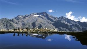 Insediato il nuovo Consiglio del Parco Alpi Marittime: Andrea Bodino nuovo vicepresidente