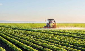 Cia Cuneo: 'Servono nuove strategie per l'assunzione di manodopera in agricoltura'