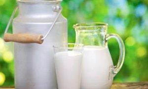 Coronavirus, Coldiretti: 'Serve atto di responsabilità da parte della filiera del latte'