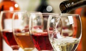 In Piemonte per il settore vitivinicolo perdite tra il 60 e il 70 per cento