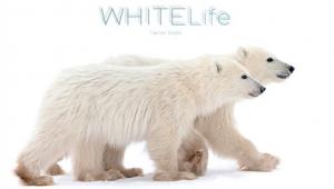 """""""WHITELife"""" - Cinque anni in viaggio"""