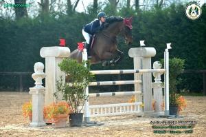 Hobby Horse si fa in due e si classifica nel Gran Premio