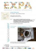 Fior d'agosto - Dado vegetale nel bosco