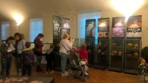 I musei di Cuneo aderiscono alla Giornata Nazionale delle Famiglie al Museo