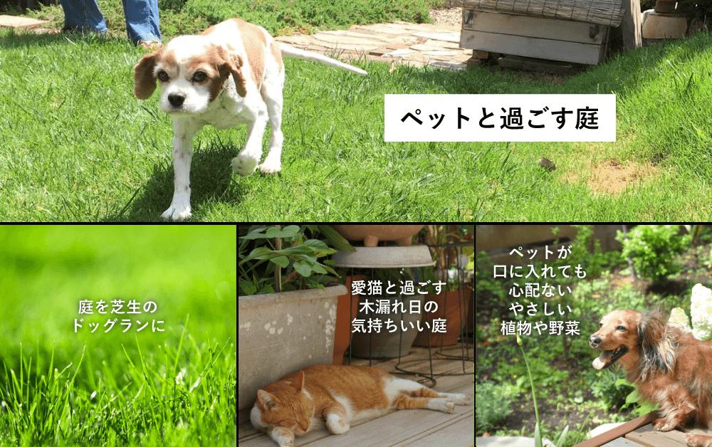 ペットと過ごす庭