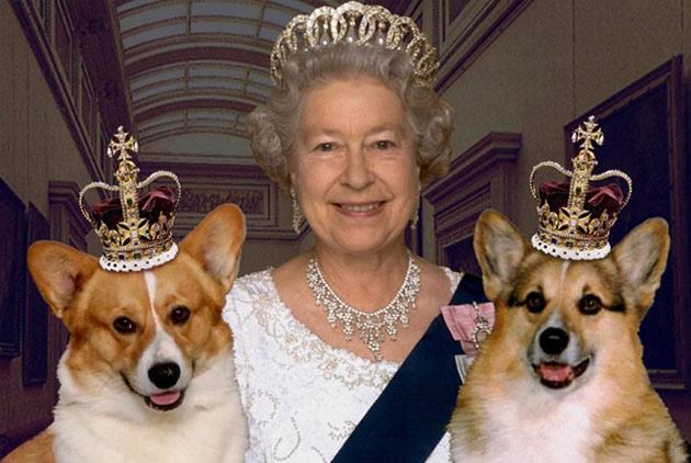 一個時代的結束 女王與她的最後一隻柯基犬