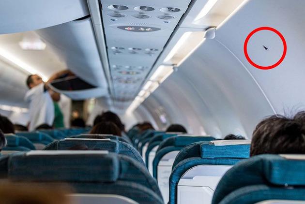 飛機上的神祕小貼紙 是要幹什麼用的?