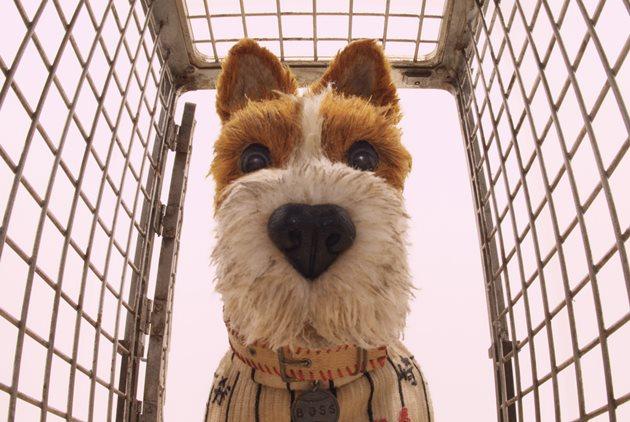 《犬之島》:當個狗奴,也能翻轉世界