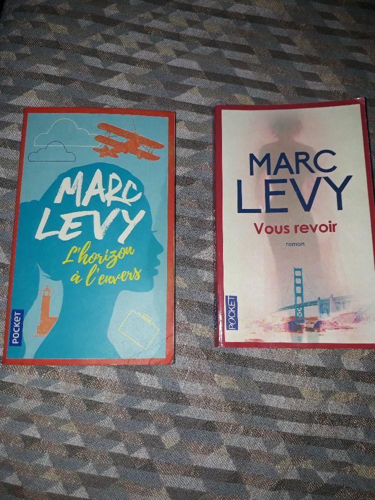 Deux Romans vous revoir et le monde à l envers de Marc Levy