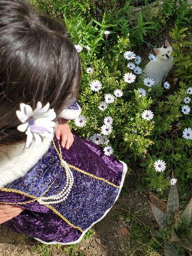 Dressing de fashinista