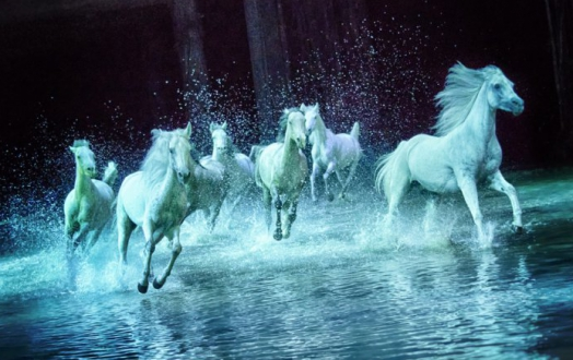 Cavalia S Odysseo Extends Its Stay In Utah Due To