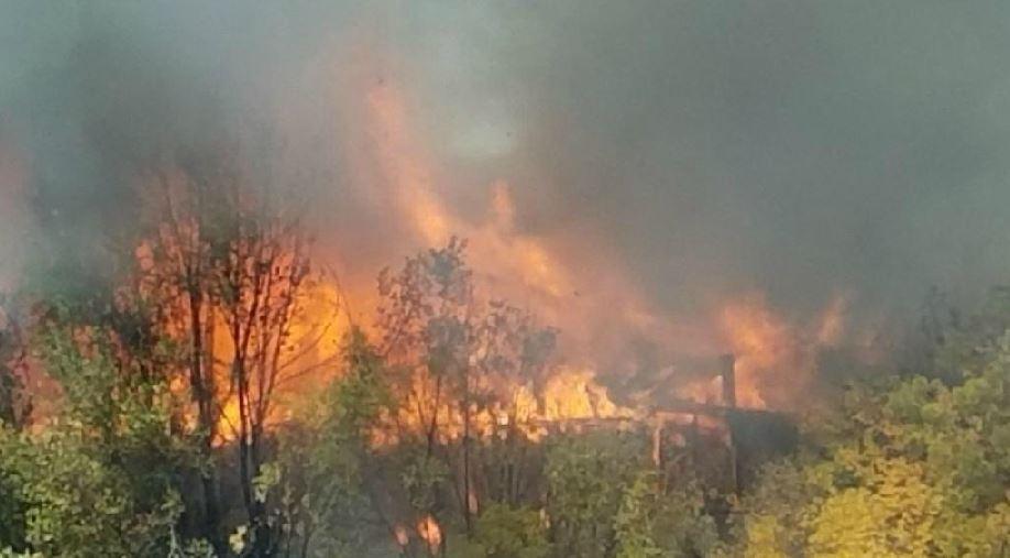 Firefighters battle blaze at Murray warehouse