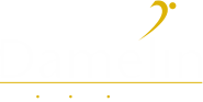 damelin_logo_white