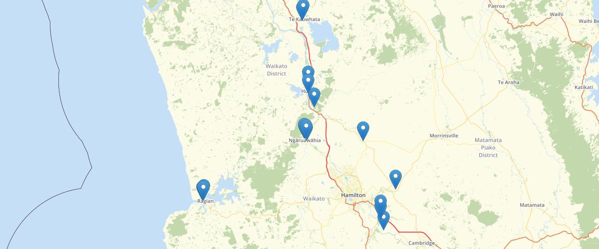 Waikato Notable Tree - Waikato District Council