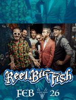 ReelBigFish_VN_IGSTORY.jpg