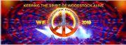 Woodstock Experience.jpg