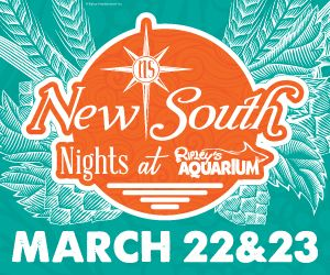 New South Nights Web 300x250-01.jpg