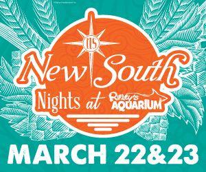 New South Nights Web 300x250-01.jpg