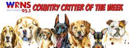 wrnsCountryCritters-1571237659 (1).jpg