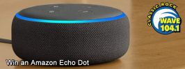 Echo Dot FT.jpg