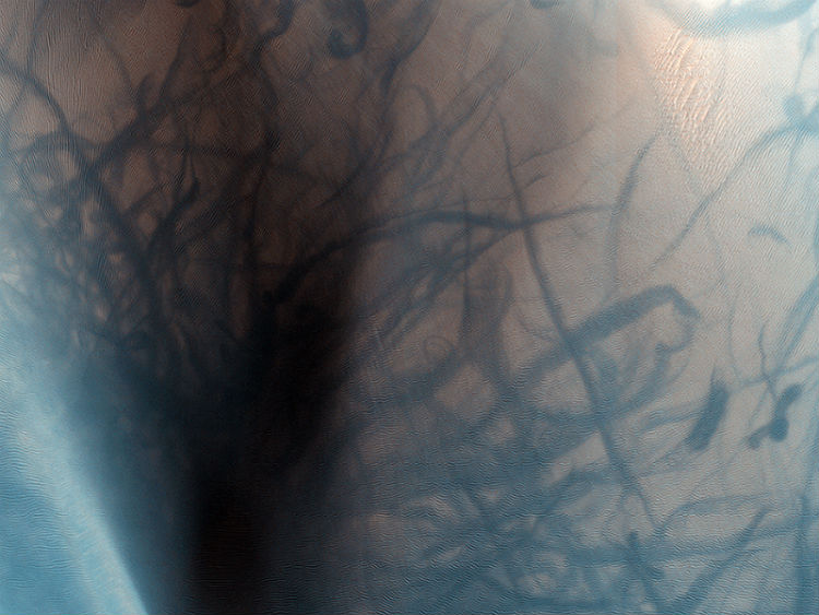 Dark Streaks from Martian Dust Devils