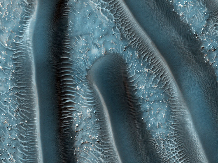 The millipedes of Mars