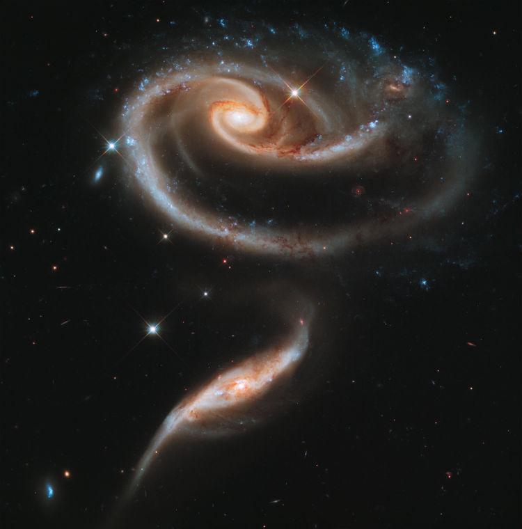 Arp 273