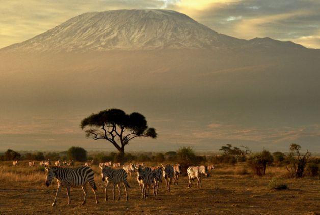 非洲最高峰跳伞 未打开 观光客丧命