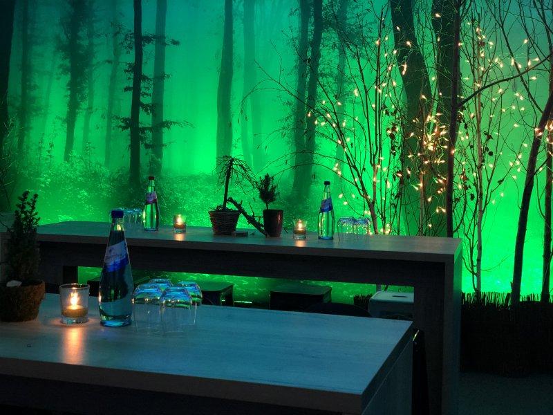 Veranstaltungsdekoration Pflanzen Nature
