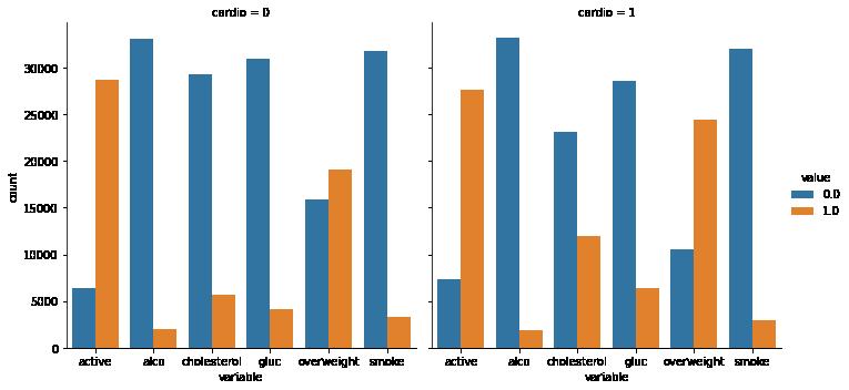 Medical data Visualizer (FCC Project 3) –image