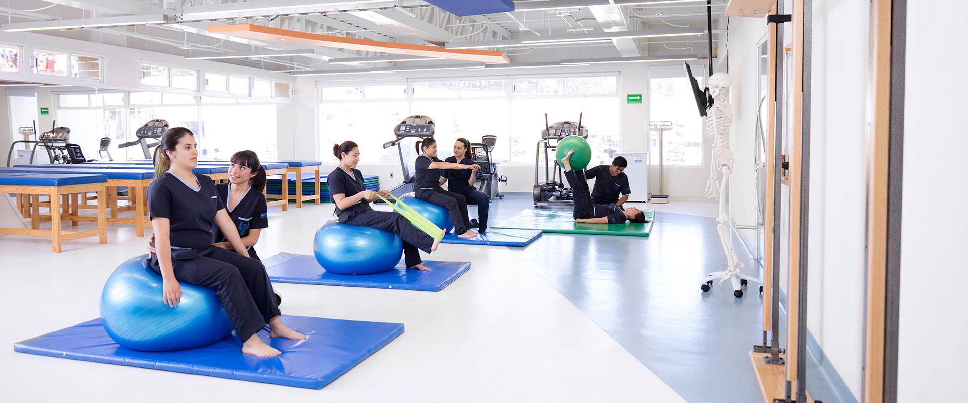 Fisioterapia-