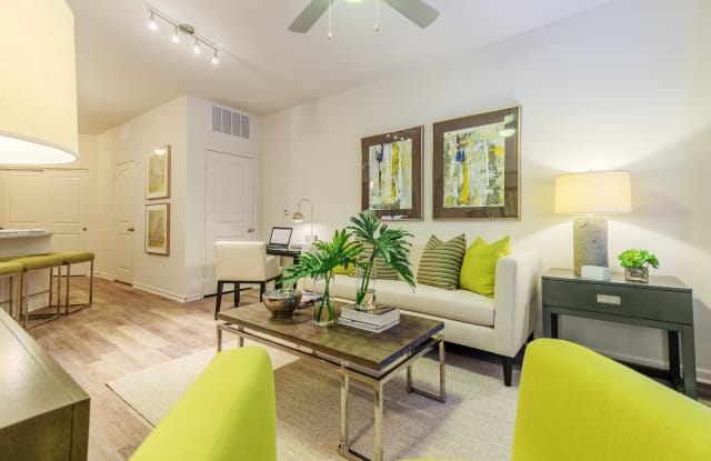 1100 South Apartment Charlotte