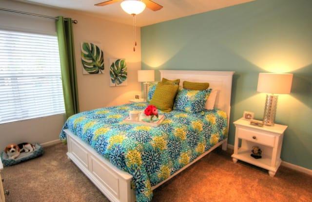 Ascent Citrus Park Apartment Tampa