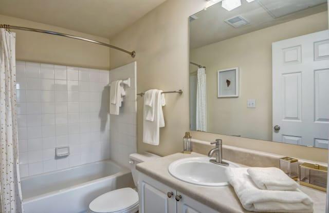 Elevation 3505 Apartment Atlanta