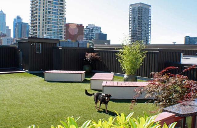 Moda Apartment Seattle