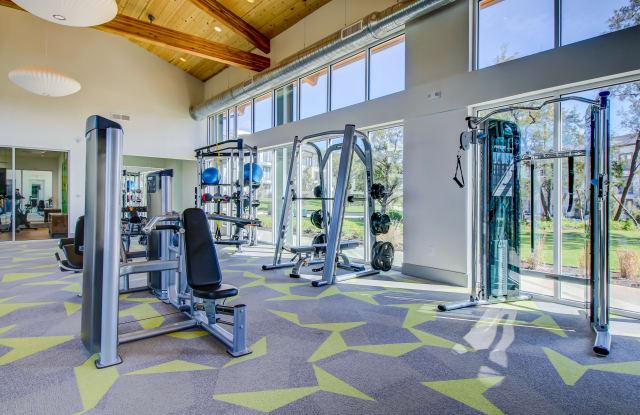 Palo Verde Apartment Austin