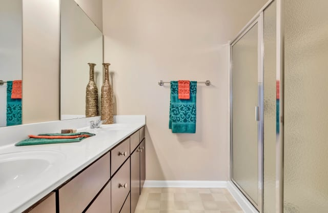 Reserve at Stone Hollow Apartment Charlotte