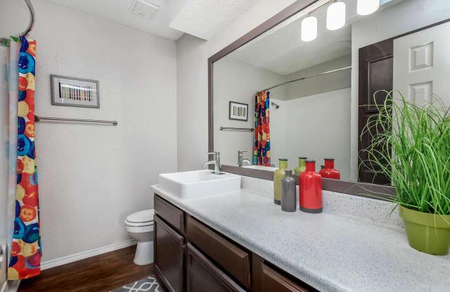 Rio @ 1604 Apartment San Antonio
