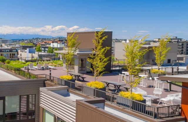 The Chloe Apartments Apartment Seattle