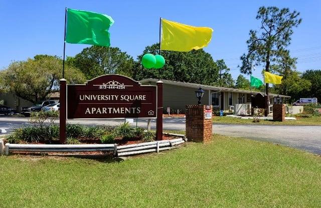 University Square I Apartment Tampa