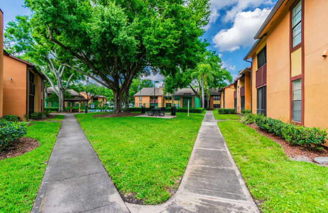 Waterstone at Carrollwood Apartment Tampa