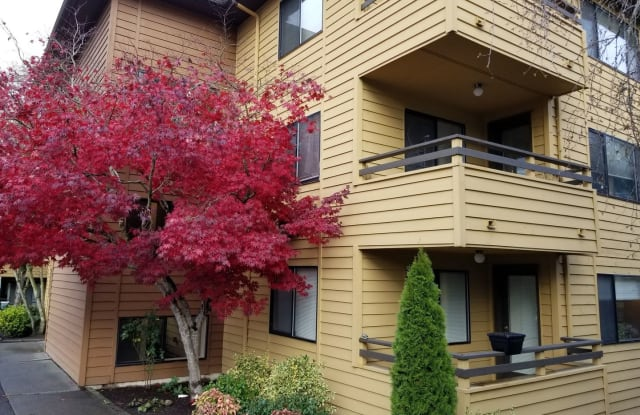 Willow Court Apartment Homes Apartment Seattle