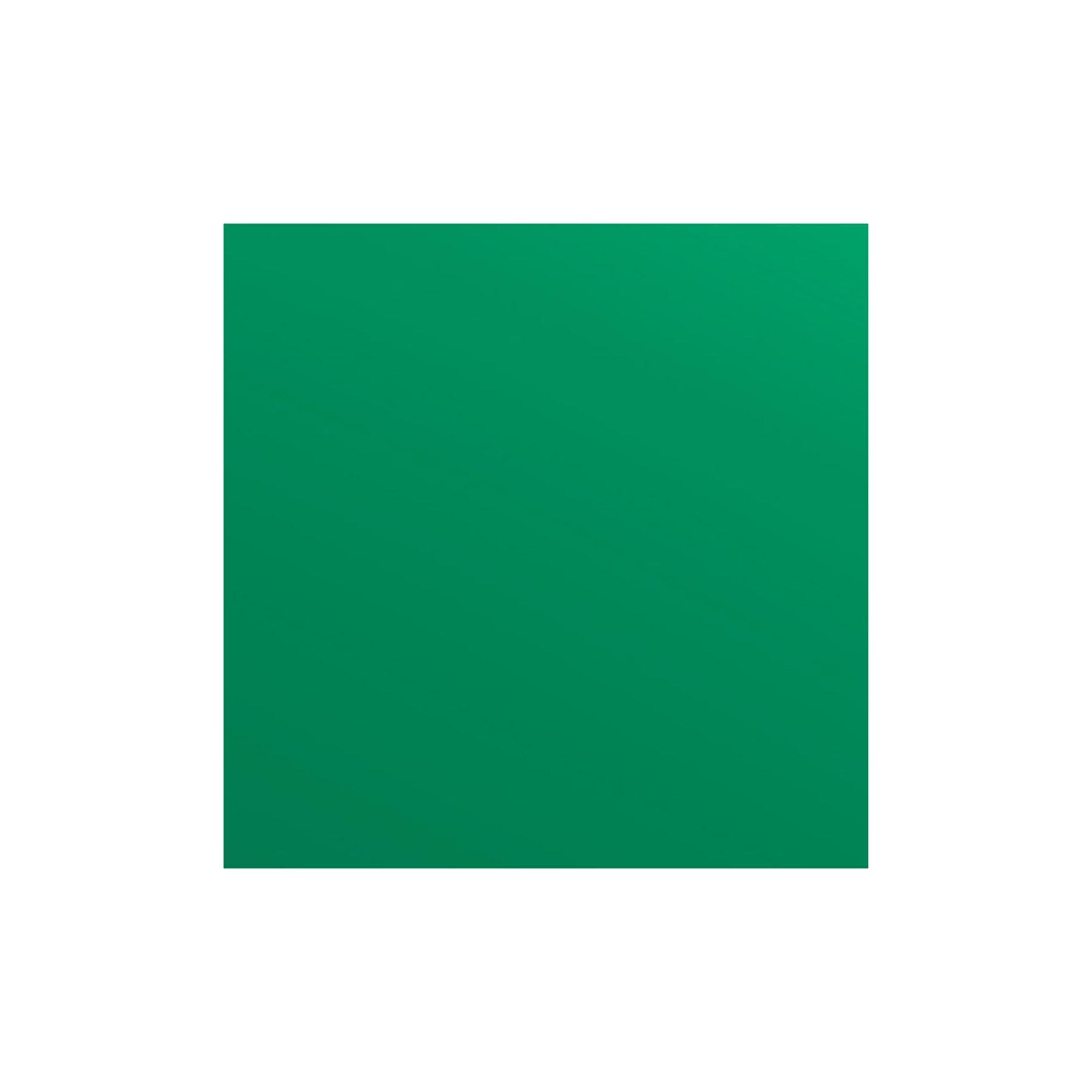 Vinilo textil Easyweed® Electric hoja 30 x 38 cm Verde